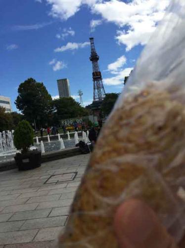 札幌大通り公園とテレビ塔と焼とうもろこし