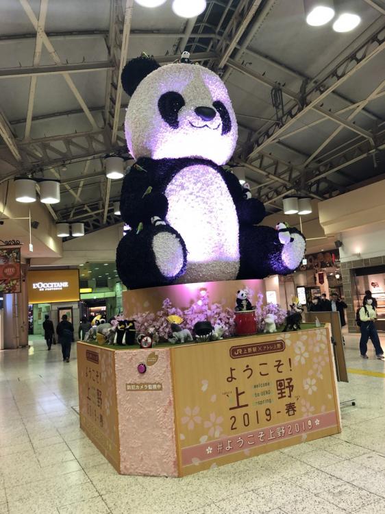 上野のマスコットはパンダ