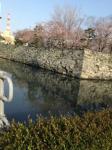 徳島城跡(徳島中央公園)