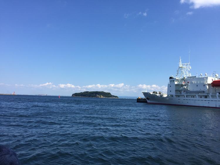 フェリーから見た猿島