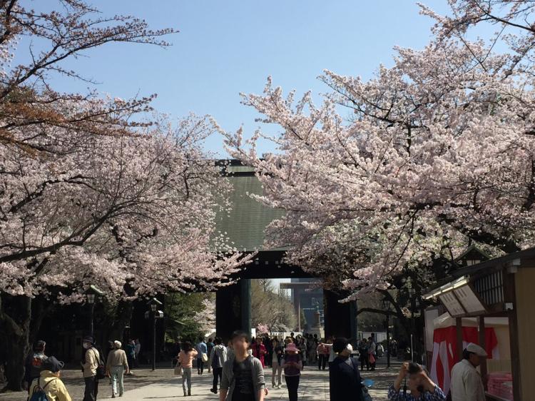 桜の時期の靖国神社