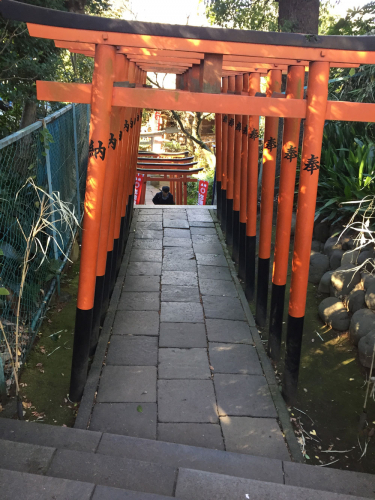稲荷神社にある連続した鳥居