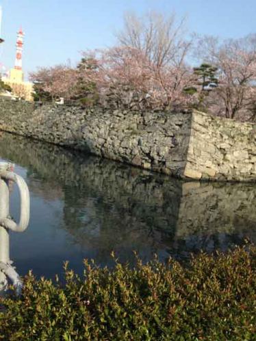 徳島中央公園・徳島城跡