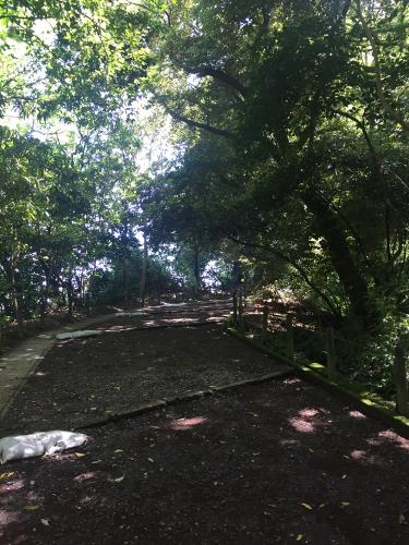 城山公園登山道