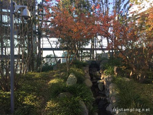 豊島の森 屋上庭園の様子