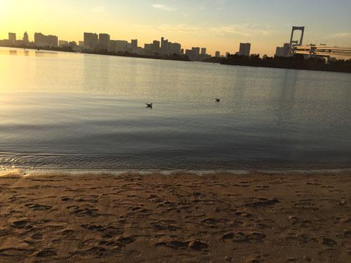 砂浜と海辺