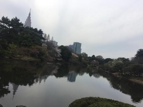 新宿の高層ビルが池に反射