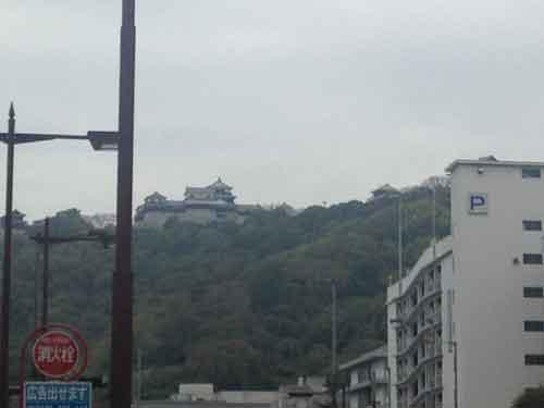 松山市内から松山城をみる