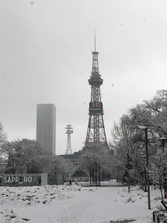 大通り公園の東端のテレビ塔