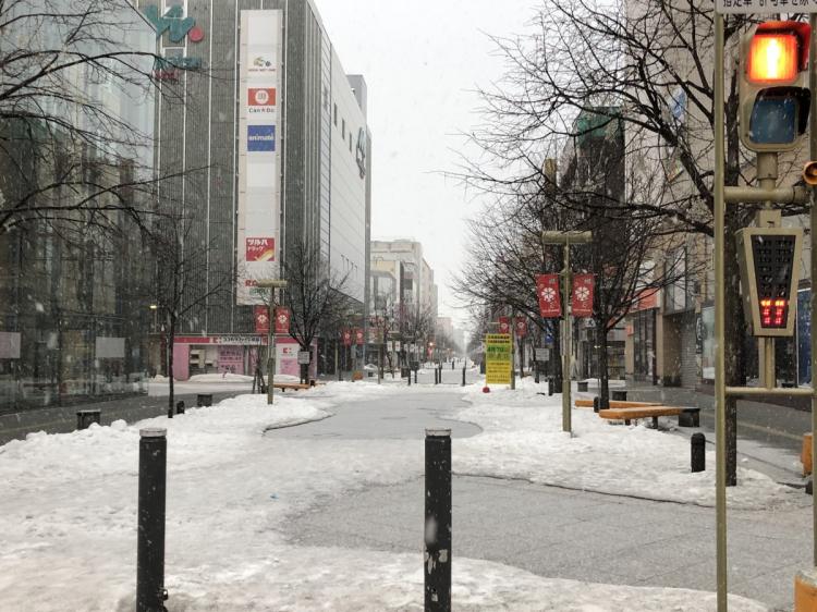雪の平和通買物公園
