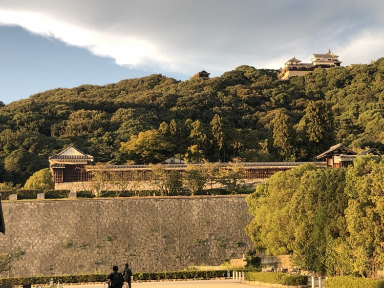 白山公園からの松山城