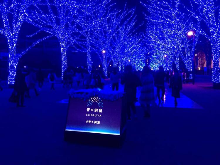 クリスマスシーズンのライトアップ青の洞窟